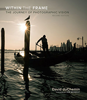 Within the Frame book