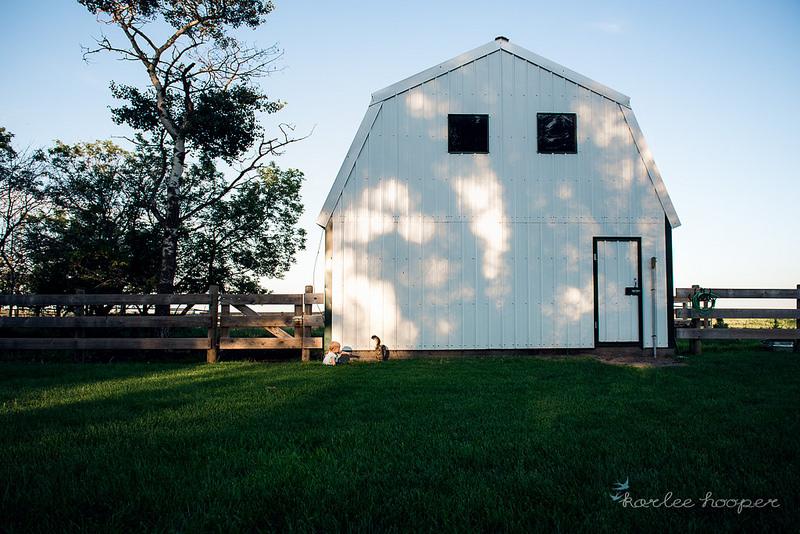 pastoral-scene-becomes-environmental-portrait-by-karlee-hooper