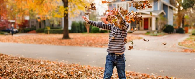 boy throwing fall colored leaves in the air by Missy Mayo