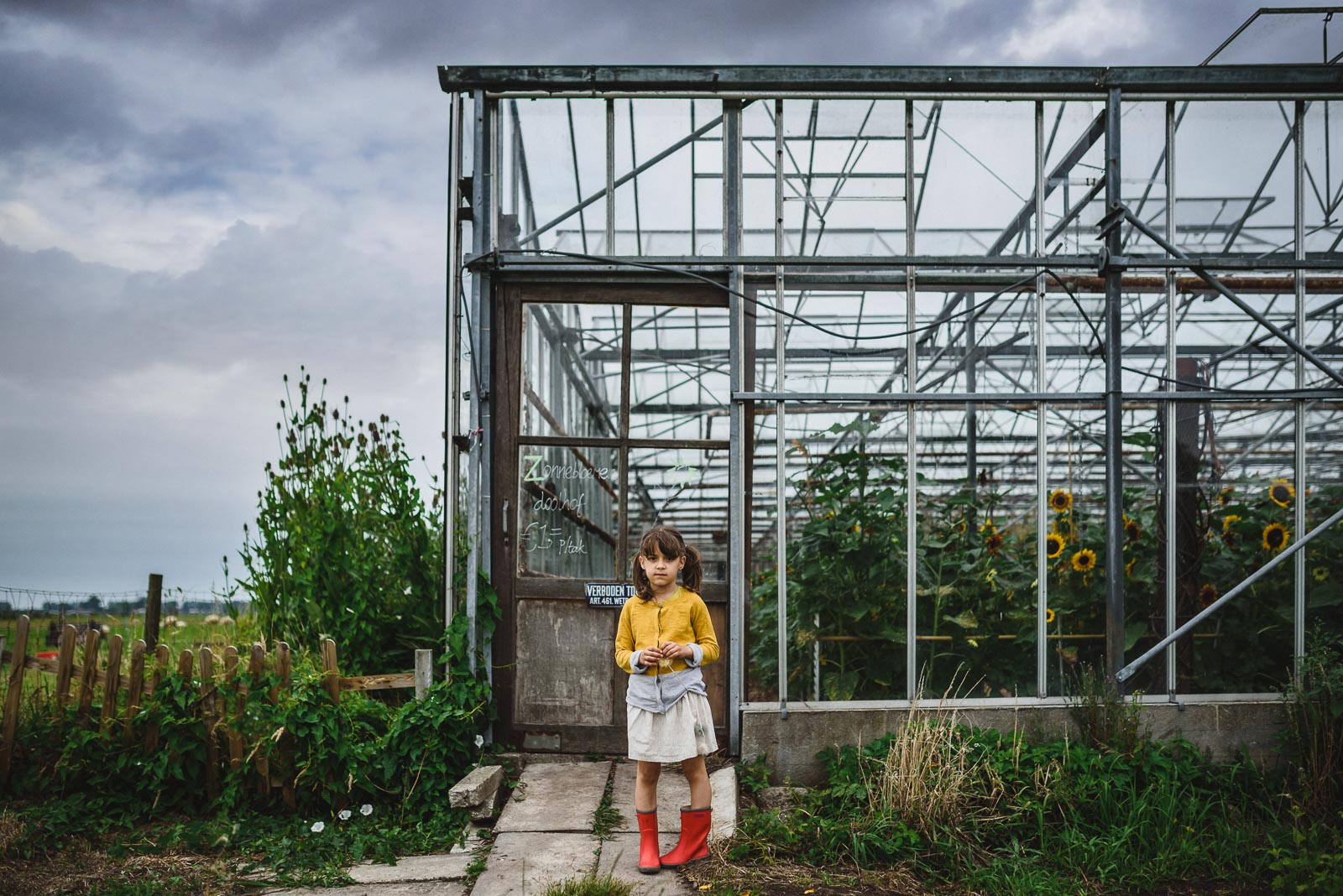 picture of girl by a greenhouse with sunflowers in it by Anita Perminova