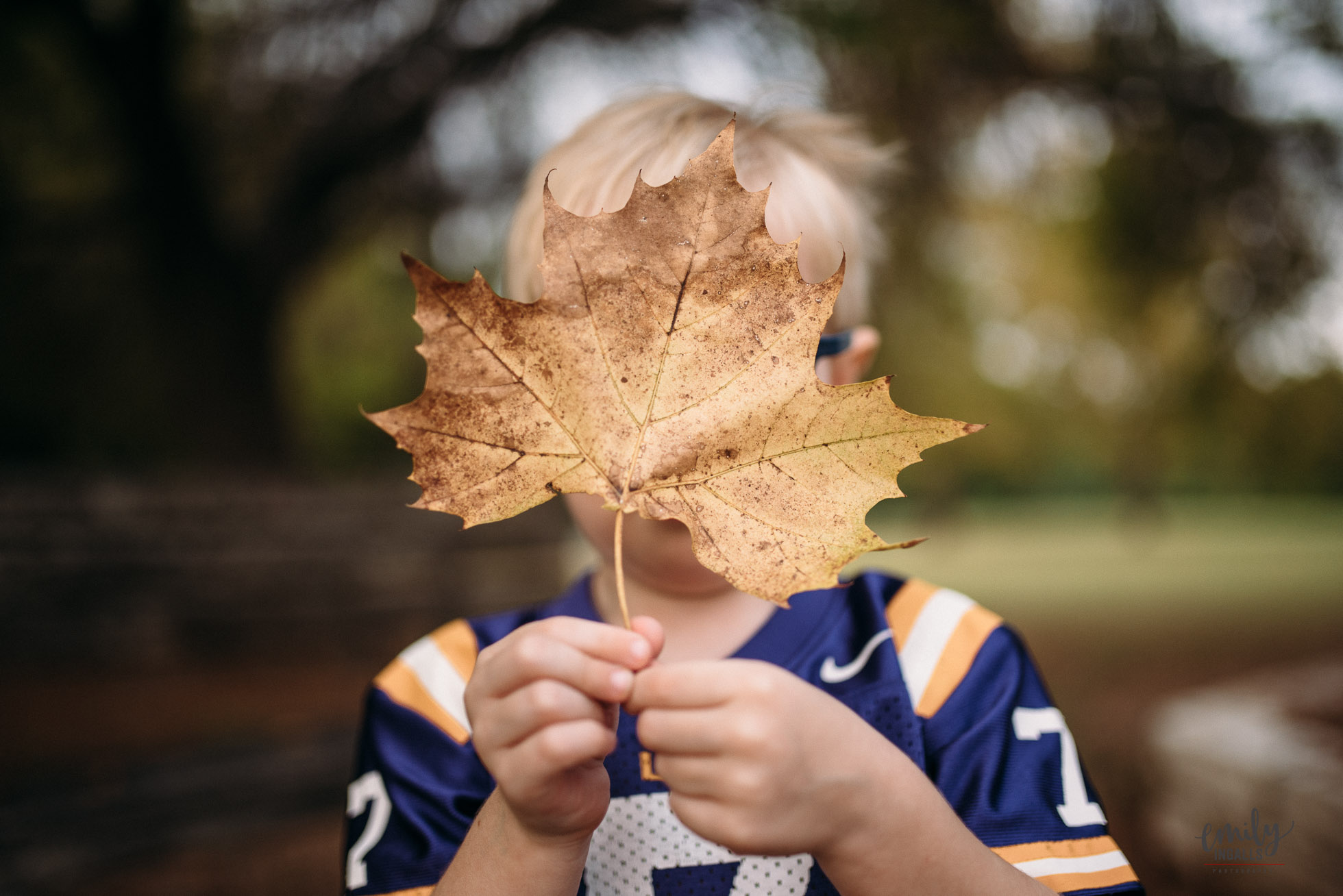 colorful picture of boy holding a leaf by Emily Ingalls