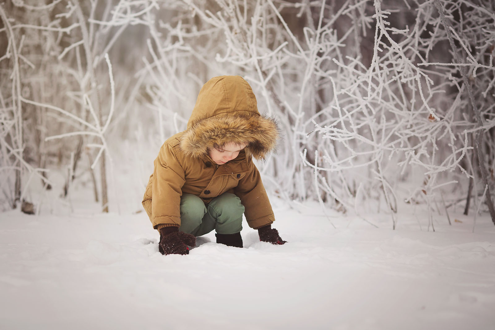 pic of kid playing in snow by Amber Walder