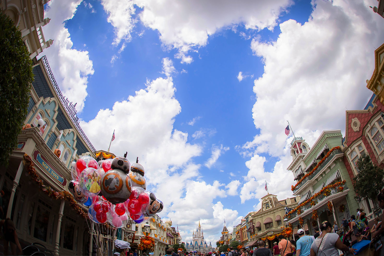 picture of Disney World by Dana Nicole Photography