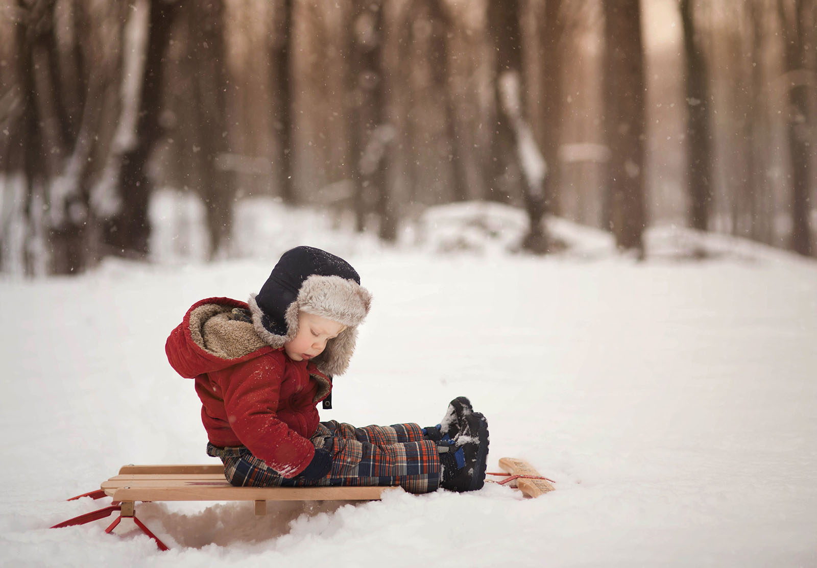 photo of boy in a red coat sitting on a sled by Meg Loeks