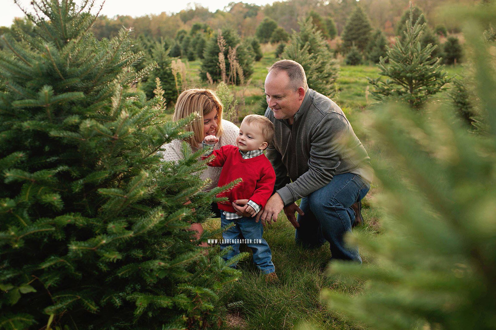 photo of family picking out their Christmas tree by Lauren Grayson