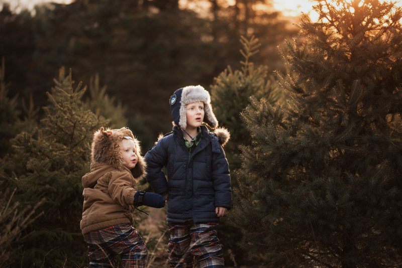 pic of brothers in a Christmas tree farm by Meg Loeks