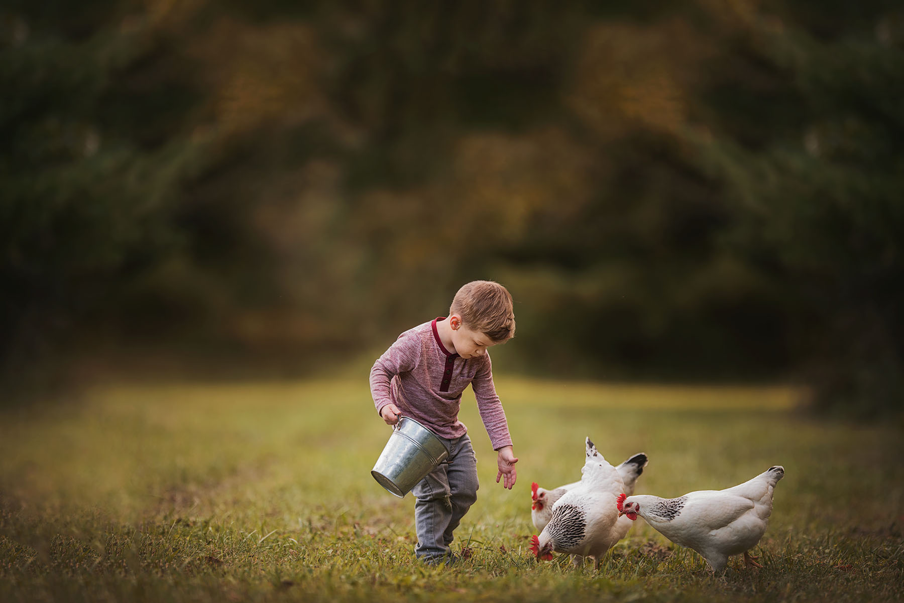 boy feeding chickens by Kellie Bieser