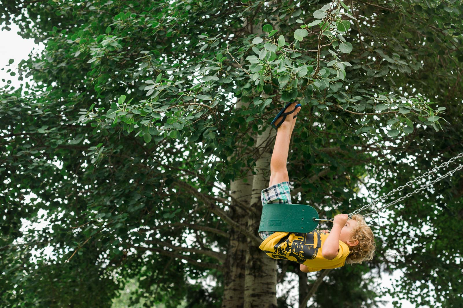 photo of boy swinging into the trees by Jessie Nelson