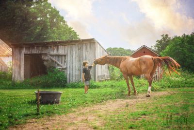 picture of boy petting a horse by Jan Tyler