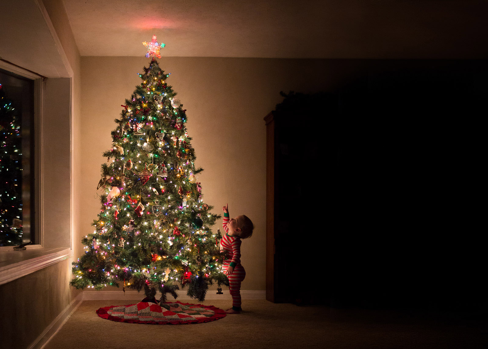 pic of boy looking at a Christmas tree by Danielle Awwad