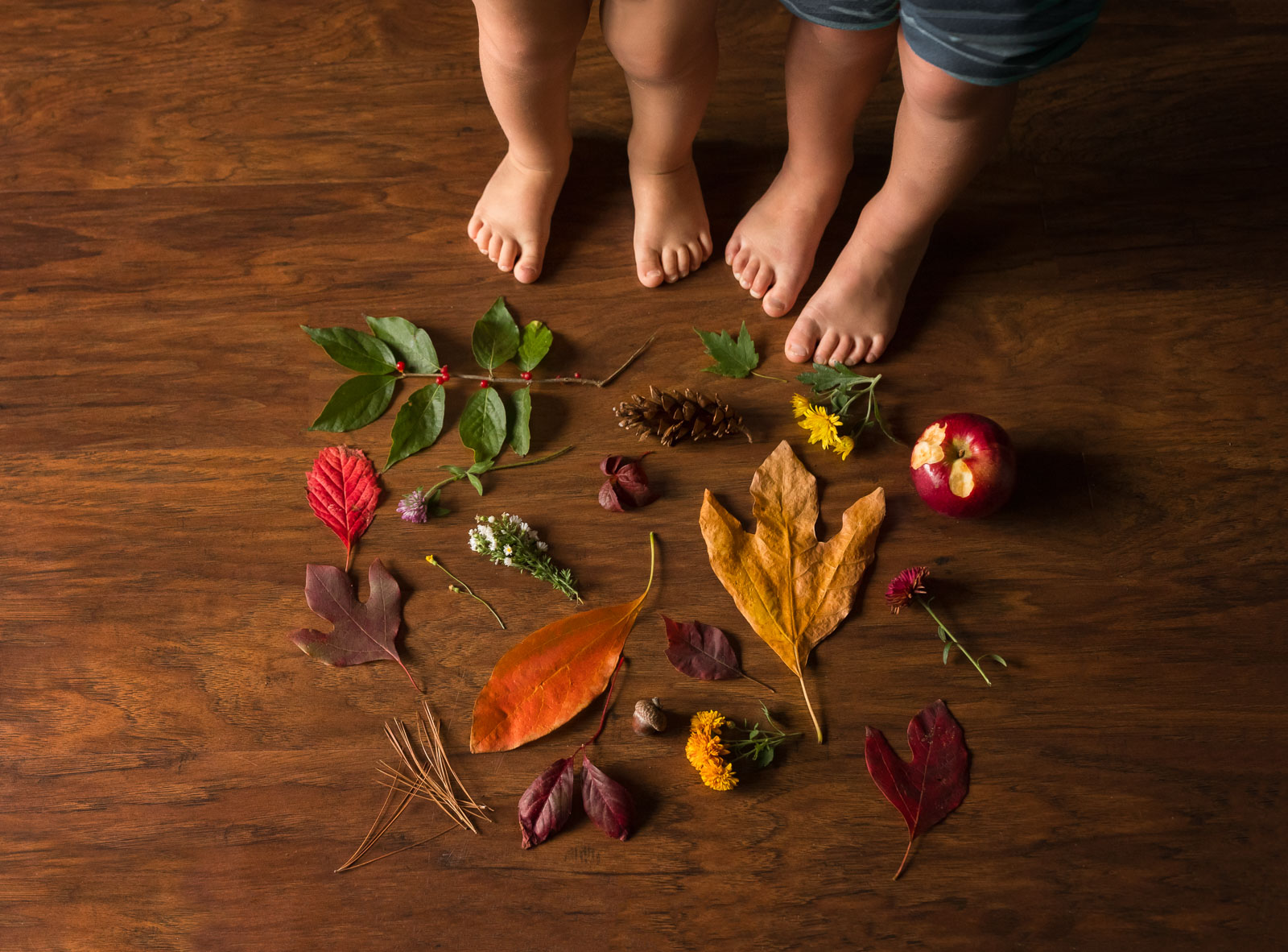 picture of kids feet and their nature treasures by Danielle Awwad