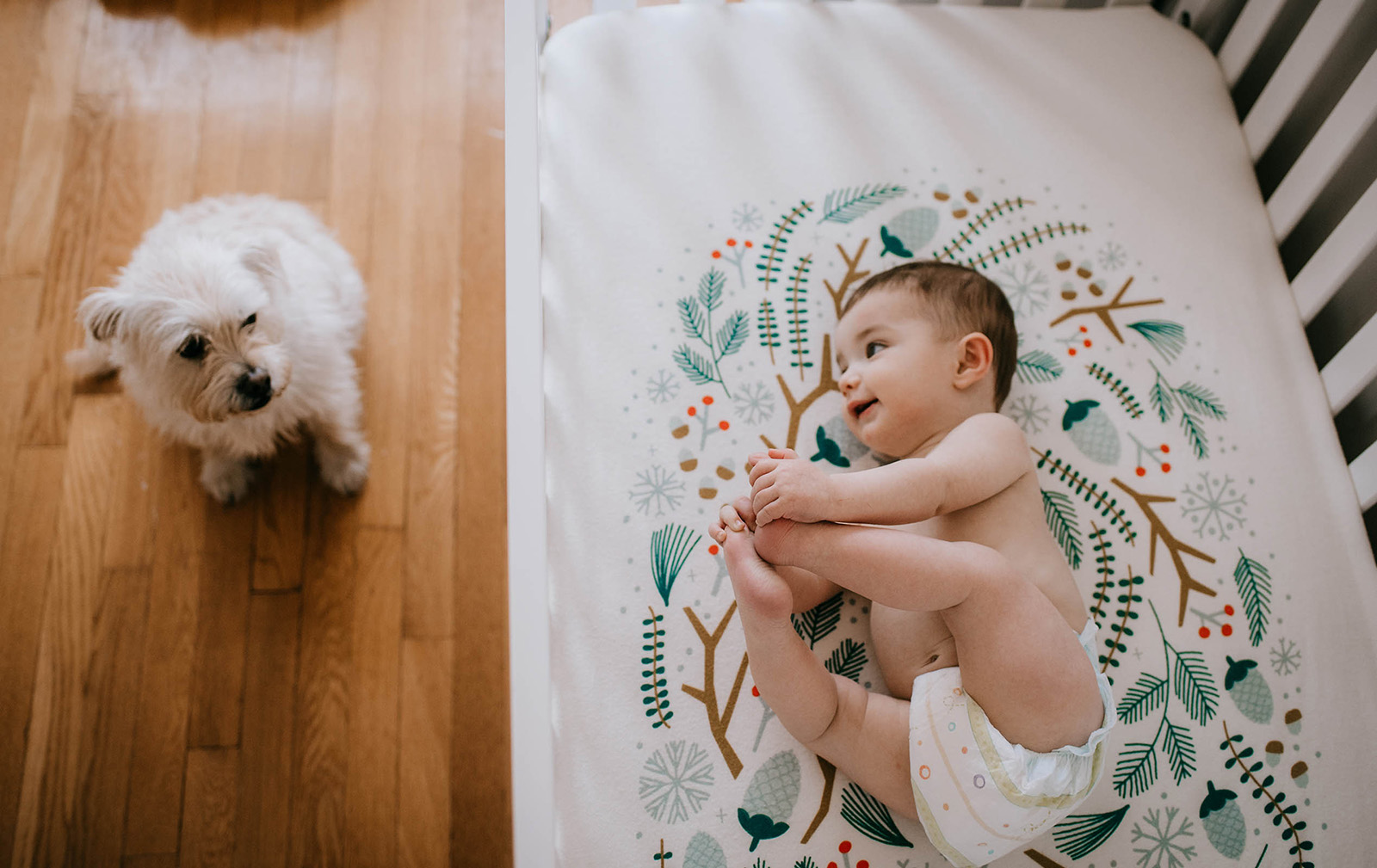 If you're struggling to successfully capture your four-legged loves with your babies, you might find some of these tips helpful.