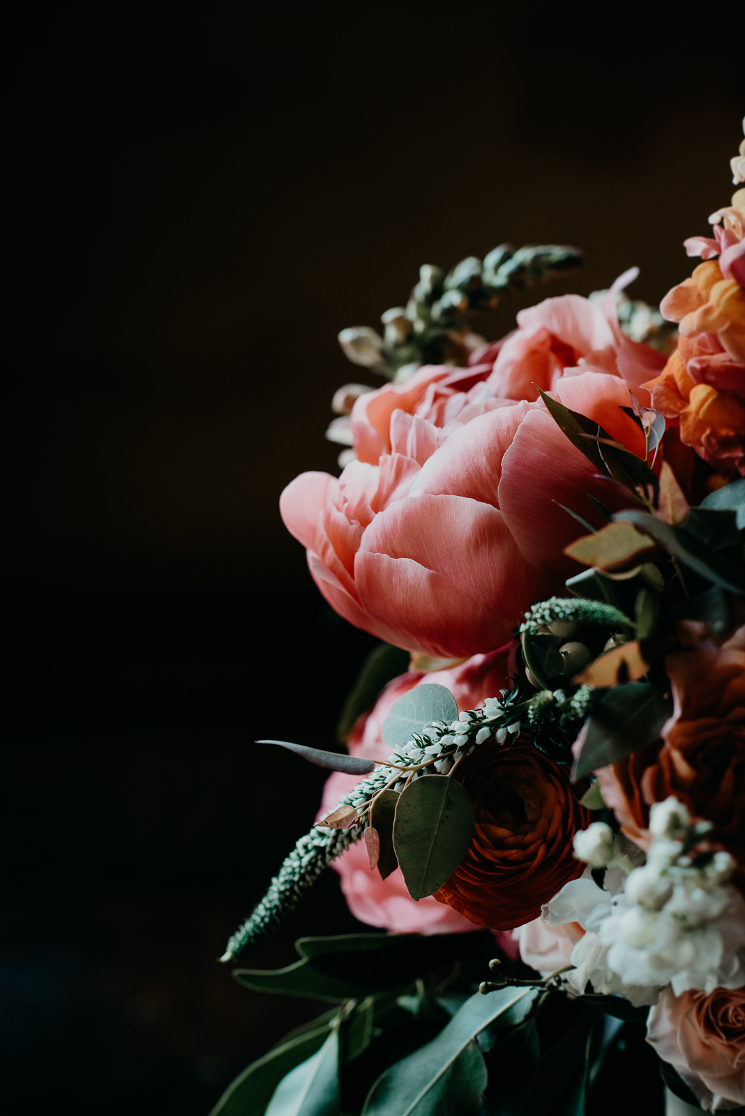 pink and orange flowers on a black background