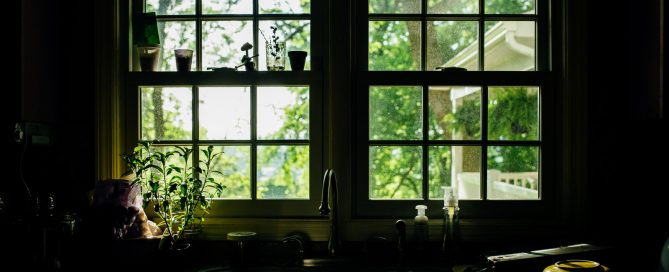 A storytelling still life image is a naturally occurring scene or object that tells a story and contains no people. I enjoy photographing storytelling still life photos all over my home, but my favorite spot is the kitchen window above the sink.