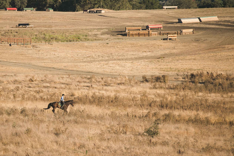 man-riding-horse-left-composition-kristin-dokoza