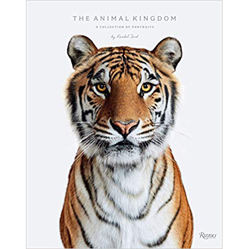 Animal Kingdom Randal Ford Clickin Moms Blog book list