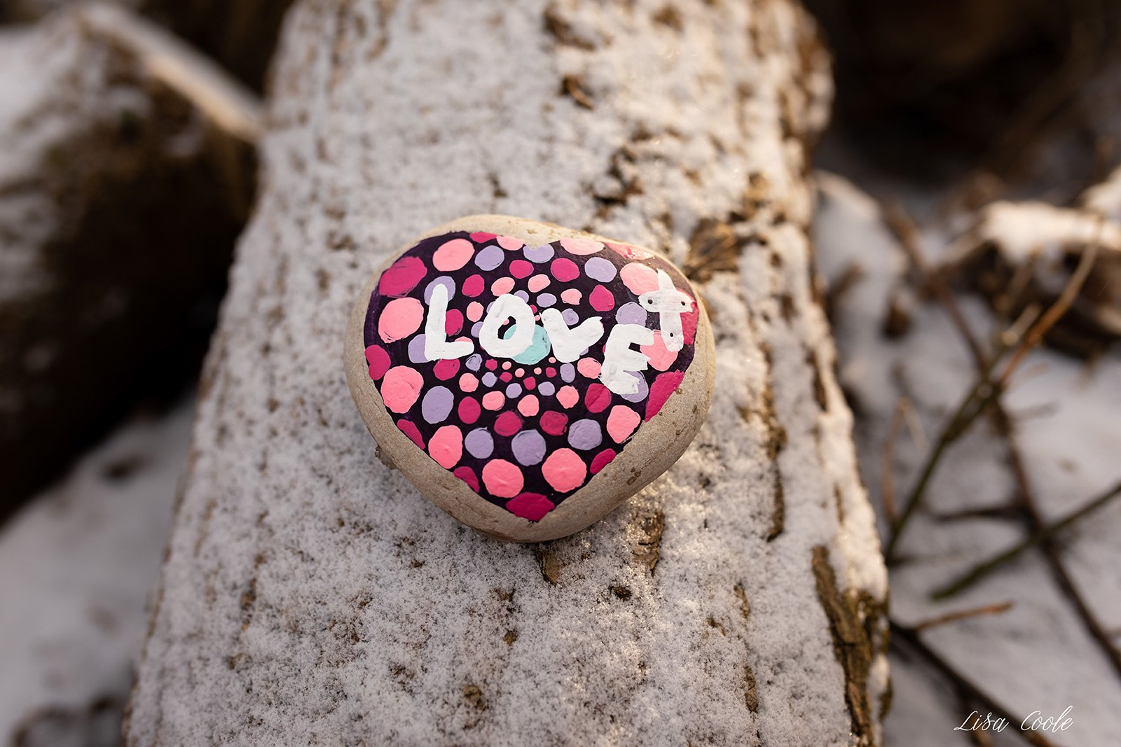 Lisa Coole-heart-sign-on-tree-love_lisacoole