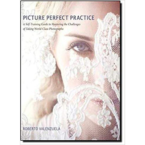Picture Perfect Practice by Roberto Valenzuela Clickin Moms Blog book list