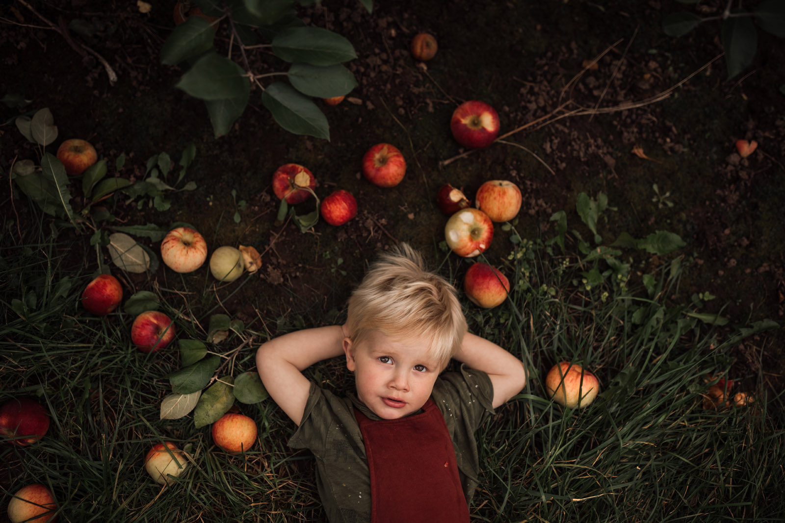 color theory boy with apples at orchard meg loeks