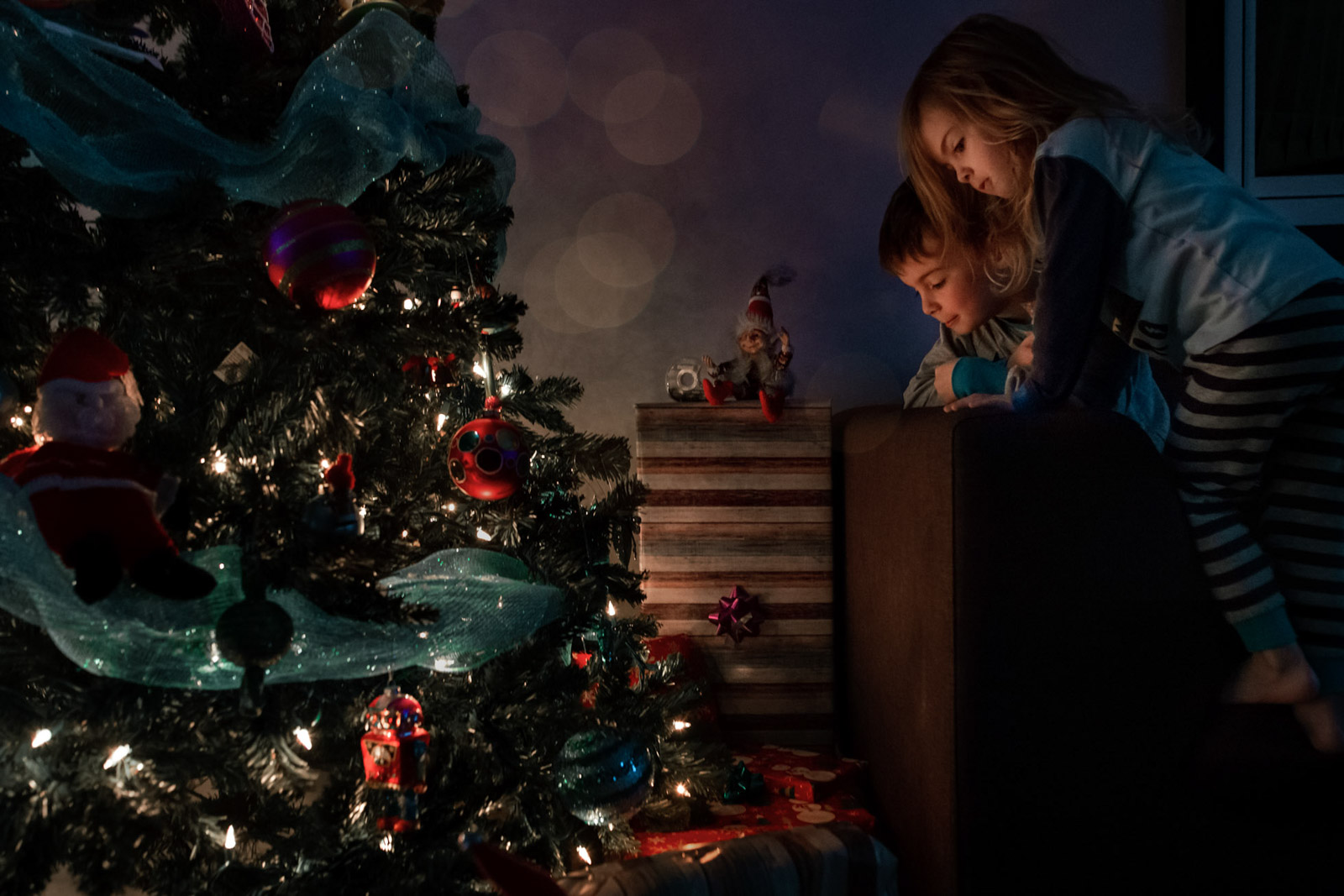 elf job done christmas gift tree kids discover morning annick simon paradis photographe quebec documentaire famille