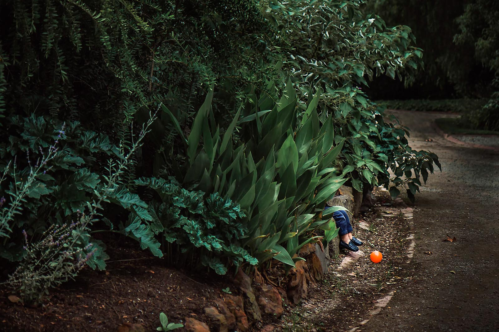 friendless_boy_alone_garden_orange_ball_waiting_friend_annick_simon_photographe_famille_quebec