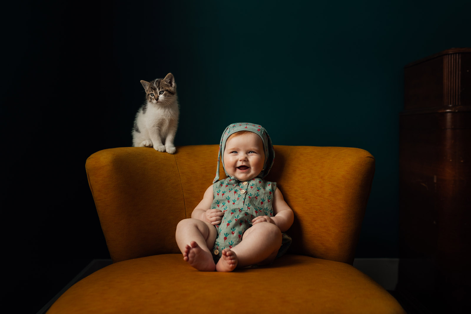 photographing pets small baby girl smiling in chair with kitten by meg loeks