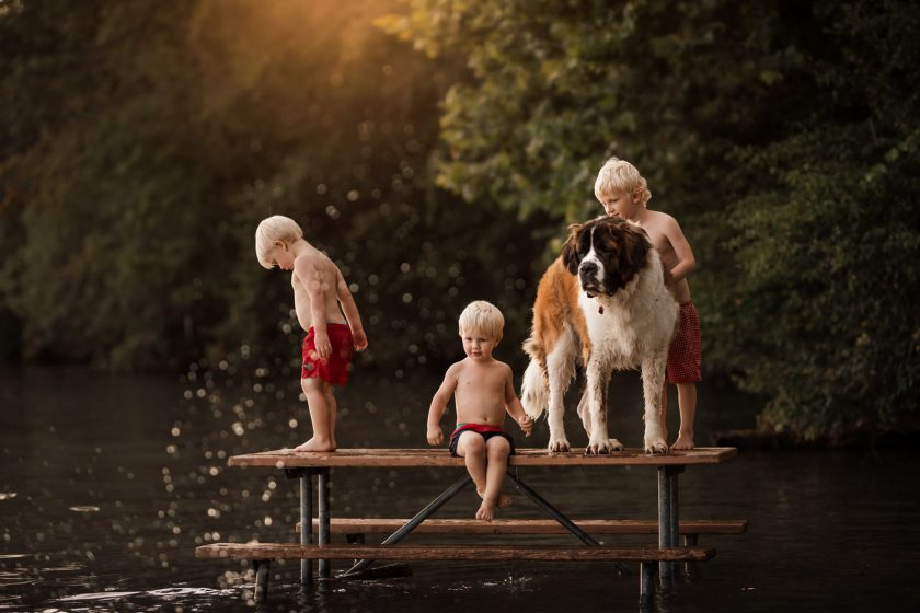 photographing pets small children playing with large dog st bernard on platform at lake by meg loeks