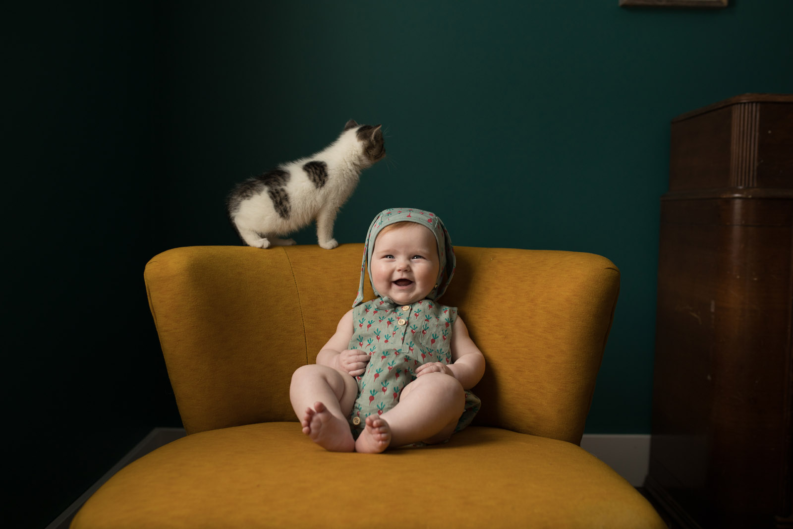 photographing pets small girl on chair with kitten before picture by meg loeks