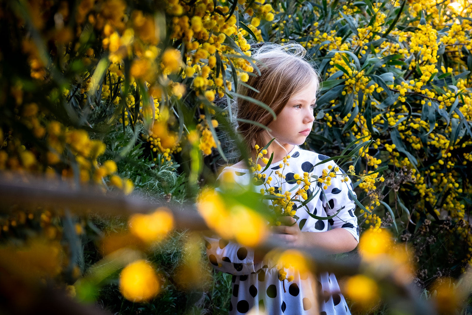 Unexpected Backdrop- Flower bed yellow flowers girl standing looking into distance karlee hooper