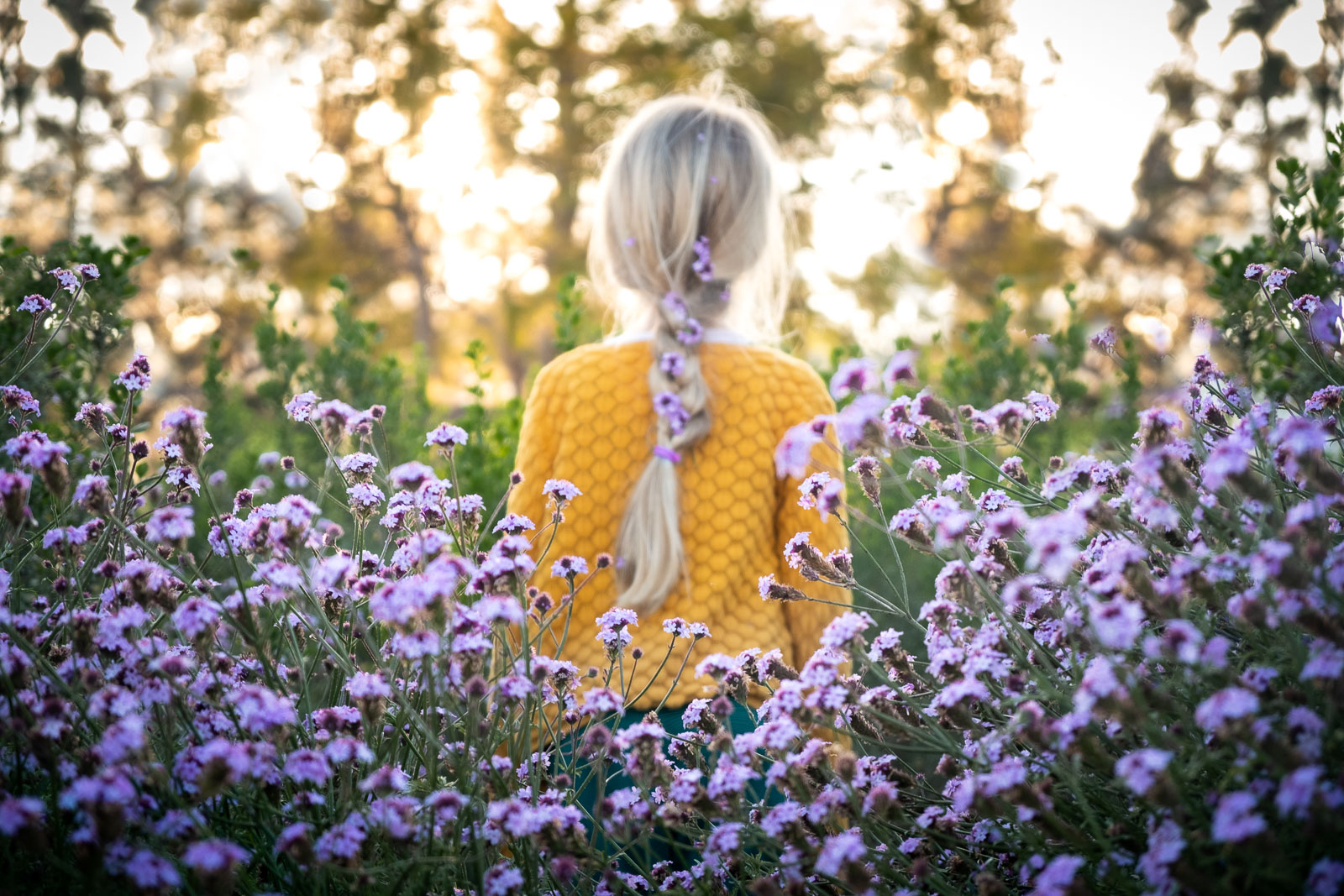 Unexpected Backdrop flower bed of purple flowers girl in yellow shirt karlee hooper