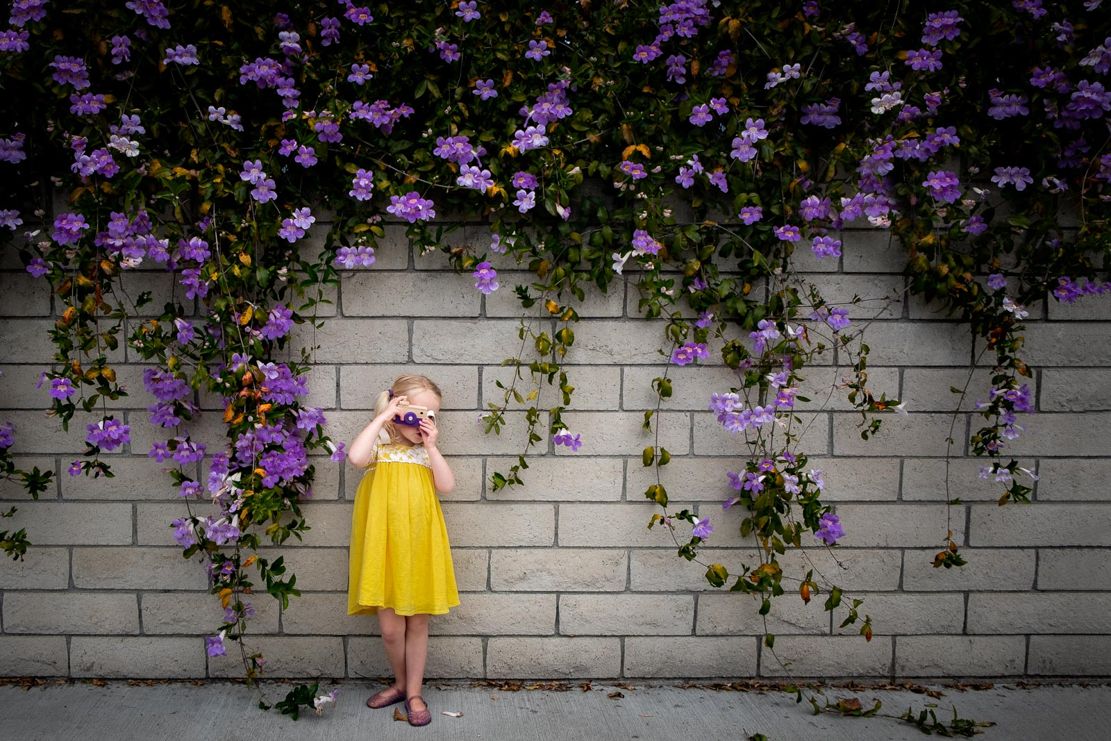 Unexpected Backdrop girl with wooden camera in front of brick wall with purple flowers yellow dress karlee hooper