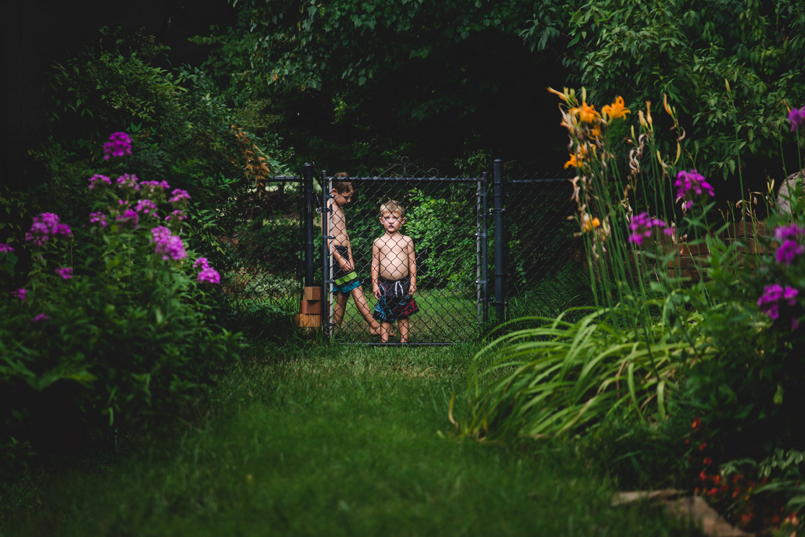 boys looking through gate with flowers by natalie greenroyd