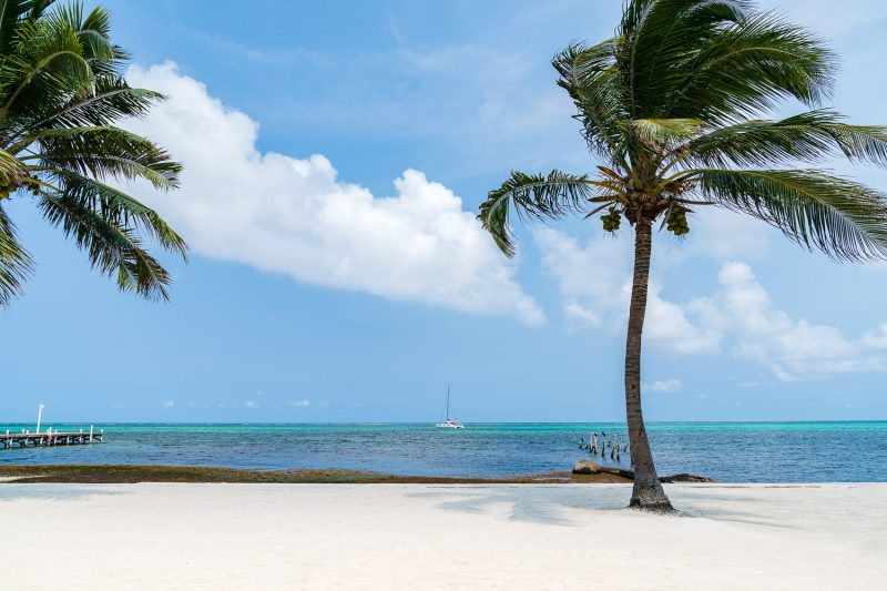 palm trees on beach with boat in water Ambergris Caye San Pedro Belize © Jennifer Carr Photography Virginia Beach-26