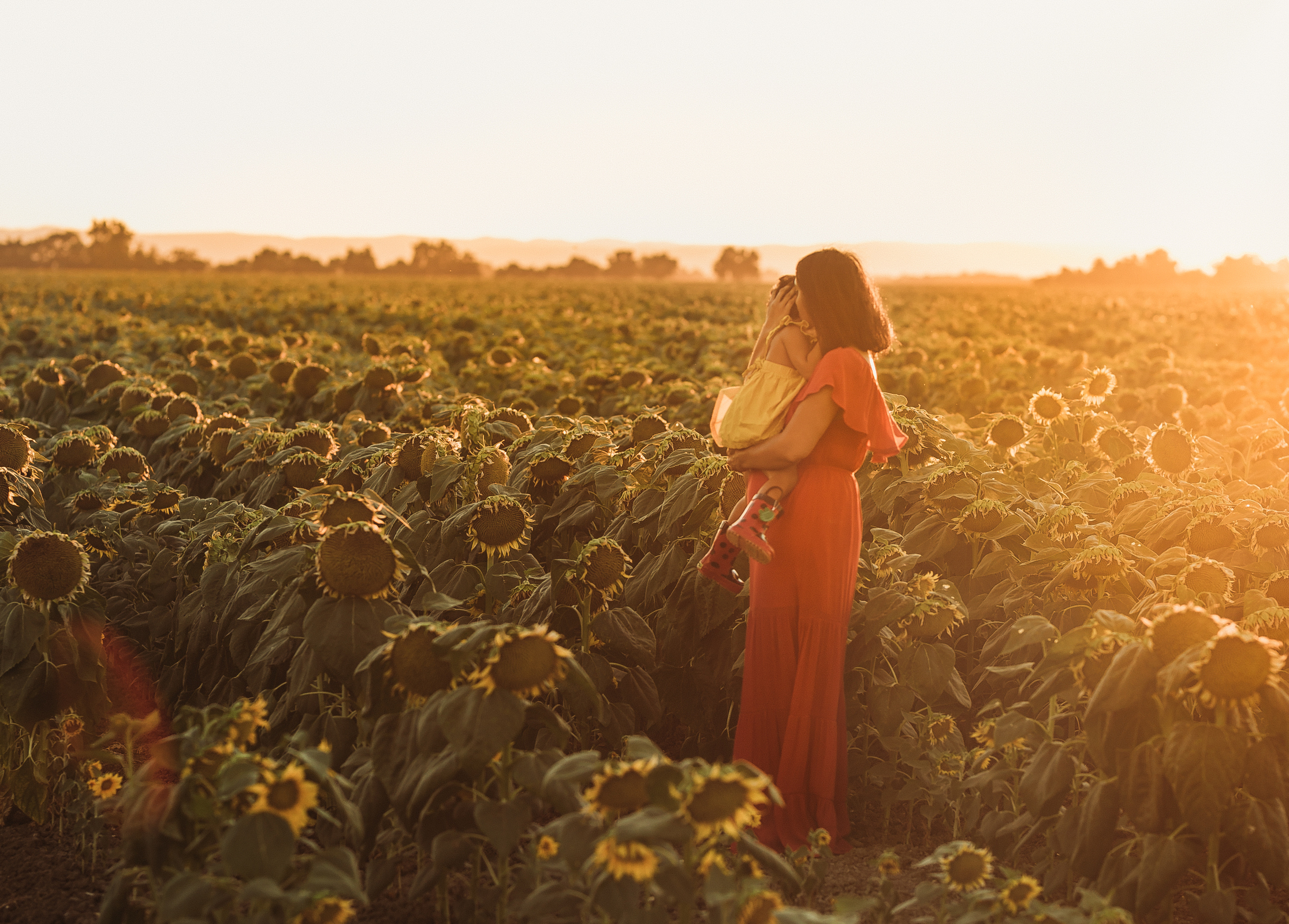 mother holding child in sunflower field in golden sunlight by jyo bhamidipati