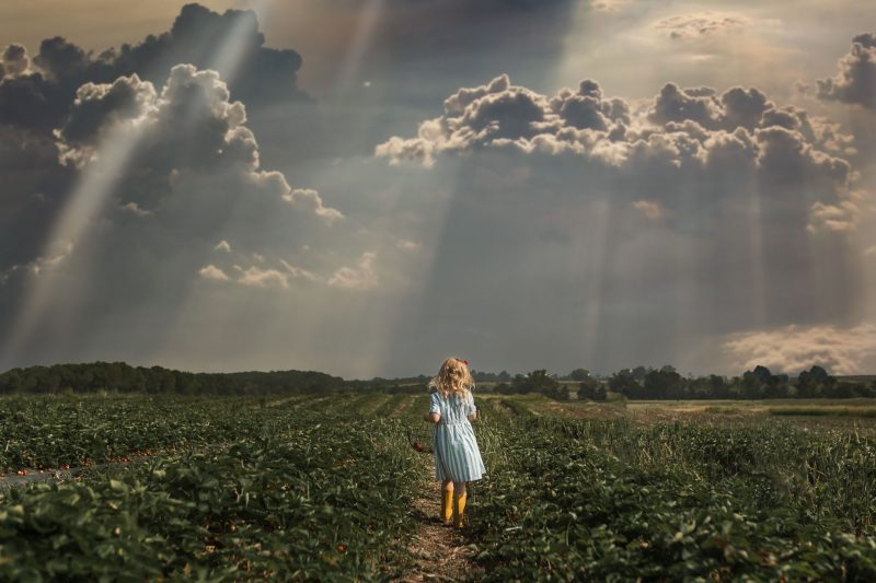 small girl at strawberry farm with clouds and sunbeams by jamie eilts
