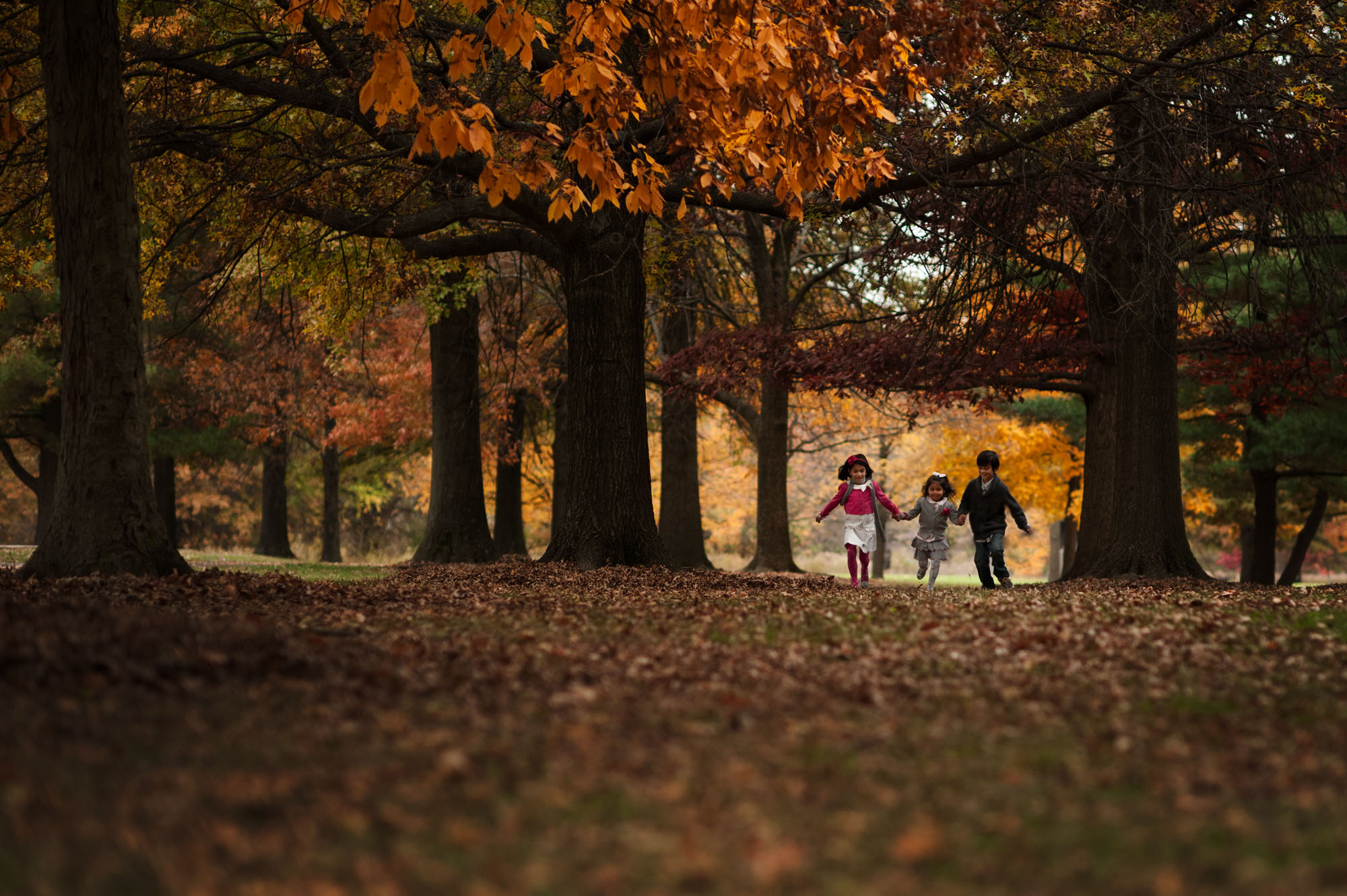 three kids running through autumn trees kellie bieser
