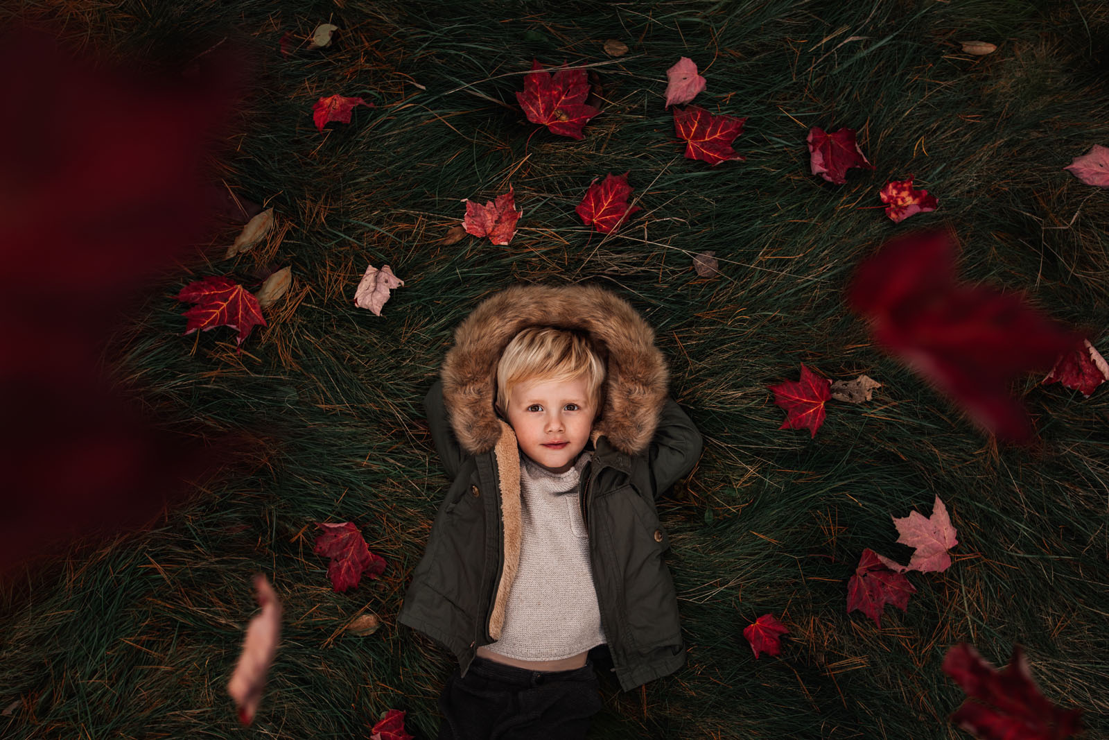 megloeks_image18 child laying in grass among red autumn leaves fall activities by meg loeks