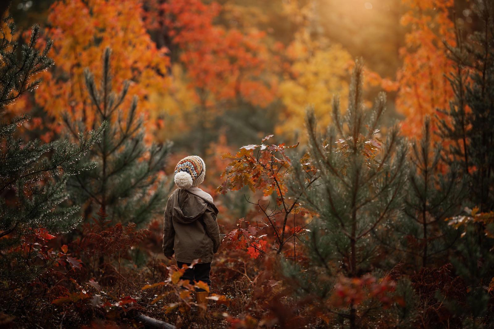 megloeks_image26 child walking among autumn foliage fall activities by meg loeks