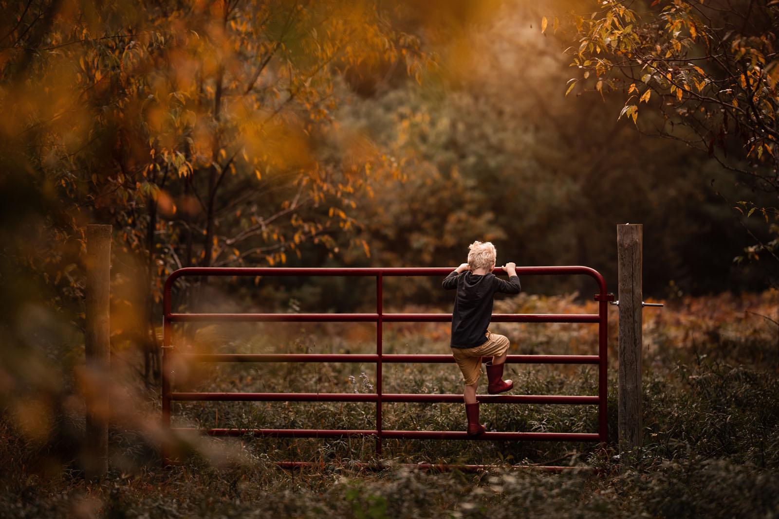 megloeks_image27 small child climbing gate in autumn fall activities meg loeks