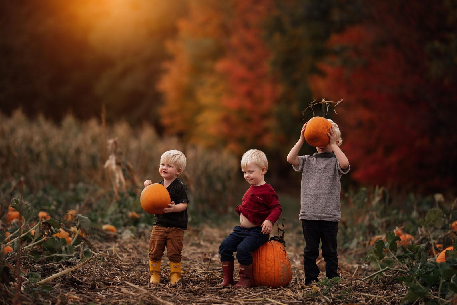 megloeks_image4 three small children at pumpkin patch holding pumpkins fall activities by meg loeks