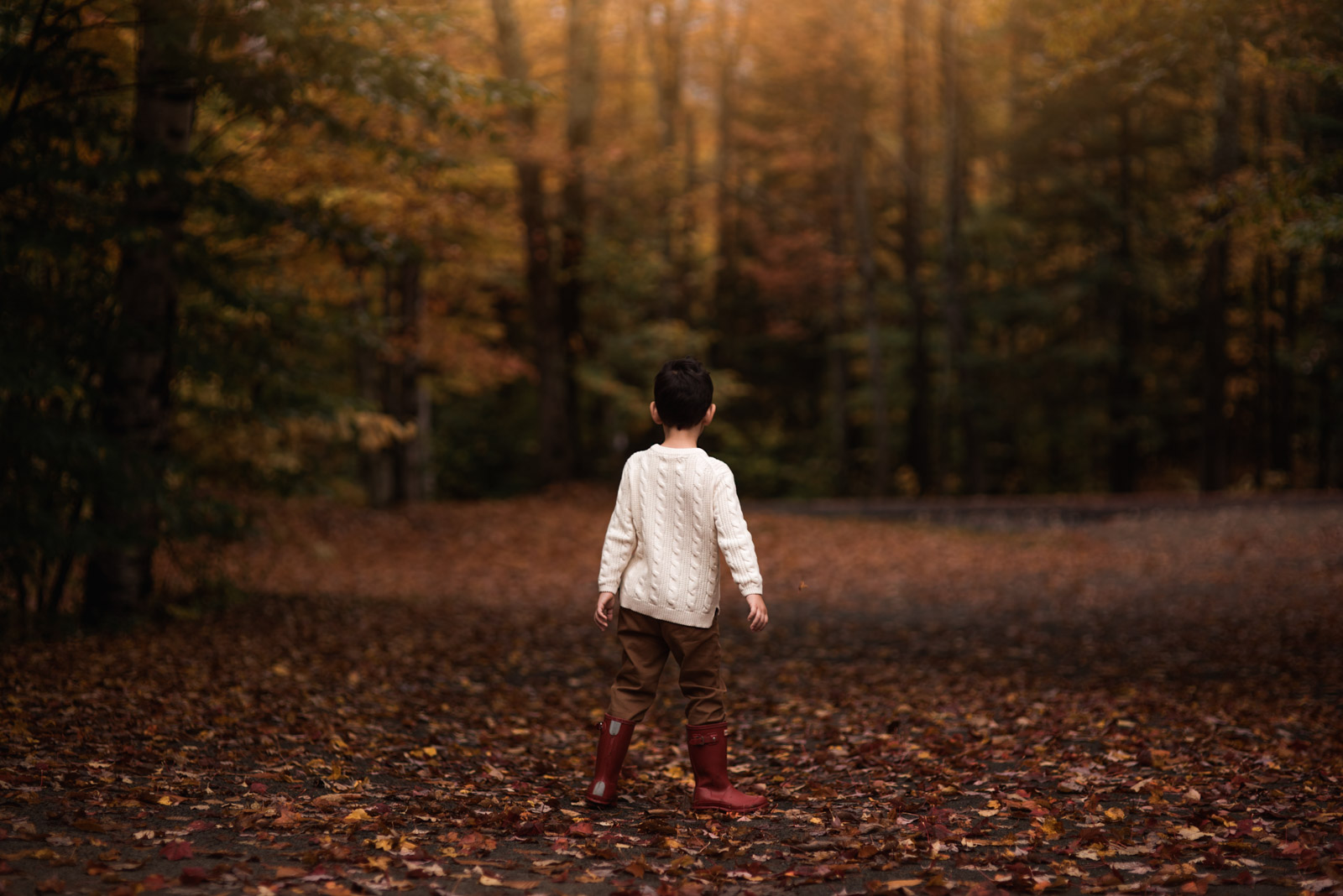 photographing fall color boy in red boots and sweater in leaves on trail sarah gupta