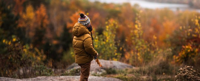 photographing fall color boy on rock looking away over trees sarah gupta