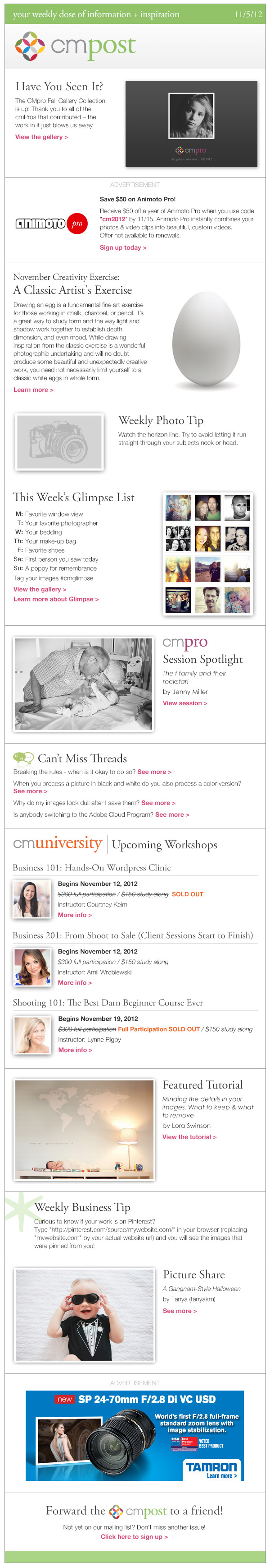 "The CMpost (Issue 75): ""CMpro Fall Gallery Collection, November creativity exercise, and minding the details"""
